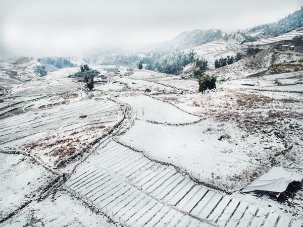 Sapa Lào Cai phủ tuyết trắng