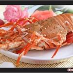 Món ngon vùng biển xứ Thanh
