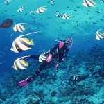 Du lịch Nha Trang bạn đã có kinh nghiệm gì chưa?