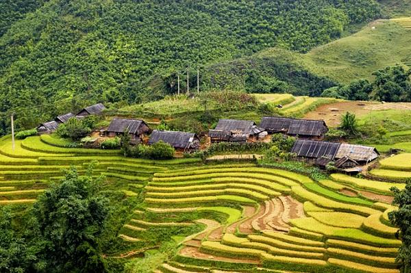 Cảnh đẹp Sapa Lào Cai
