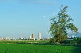 ngoại ô Nha Trang