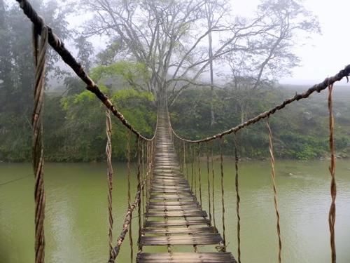 Cầu mây Sapa Lào Cai