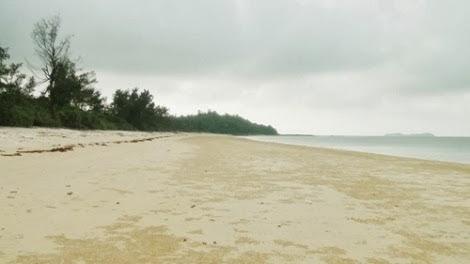 Nét hoang sơ của bãi biển