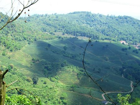 Vẻ đẹp hùng vĩ, bao la của Hà Giang nhìn từ đỉnh đèo