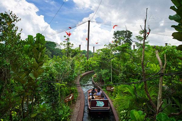 Những trải nghiệm vô cùng thú vị tại River Safari