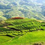Du lịch Mai Châu Hòa Bình, kinh nghiệm chi tiết đầy đủ đi Mai Châu
