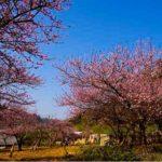 Kinh nghiệm du lịch Mai Châu tự túc, phượt Mai Châu 2 ngày chi tiết