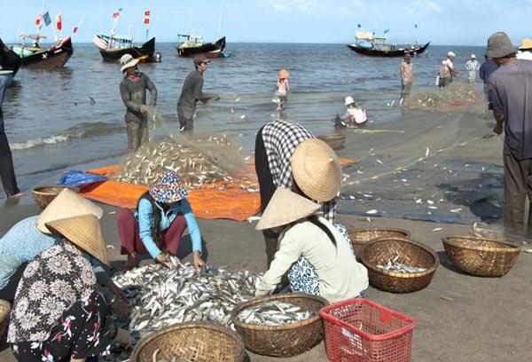 Chợ hải sản ở Quan Lạn