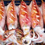 Du lịch Cô Tô ăn hải sản gì?