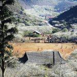 Khám phá thung lũng mận Nà Ka Mộc Châu