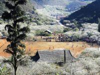 Thung lũng Nà Ka Mộc Châu